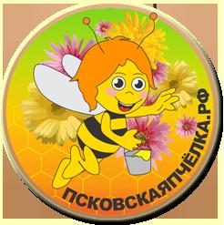 Перга, Пыльца, Мёд - ПАСЕКА ХАРИТОНОВЫХ - ПсковскаяПчёлка.рф