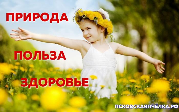 ПсковскаяПчёлка.рф - ПРИРОДА ПОЛЬЗА ЗДОРОВЬЕ